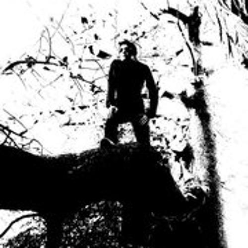 Sébastien Moitzheim's avatar