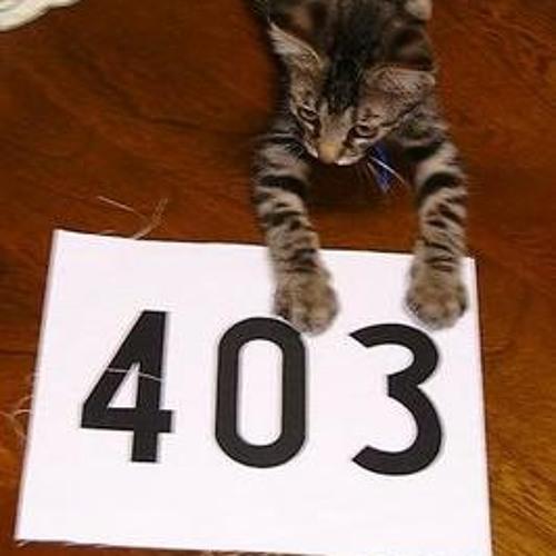 403(team-7)'s avatar