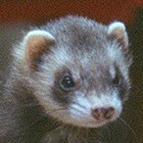irazall's avatar