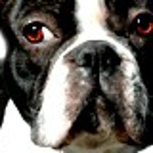 OOK's avatar
