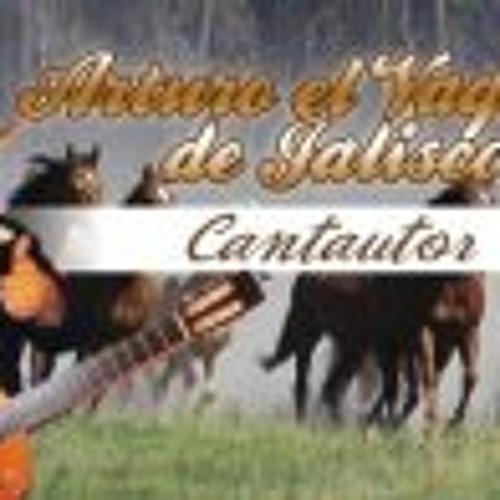 EL VAQUERO DE JALISCO's avatar