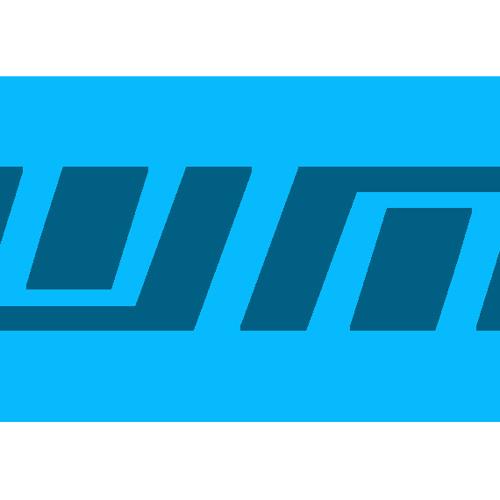 DubYou M's avatar