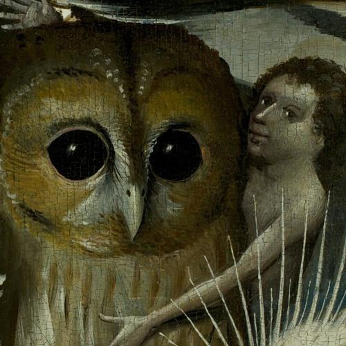Adansonia's avatar