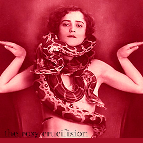 the rosy crucifixion's avatar