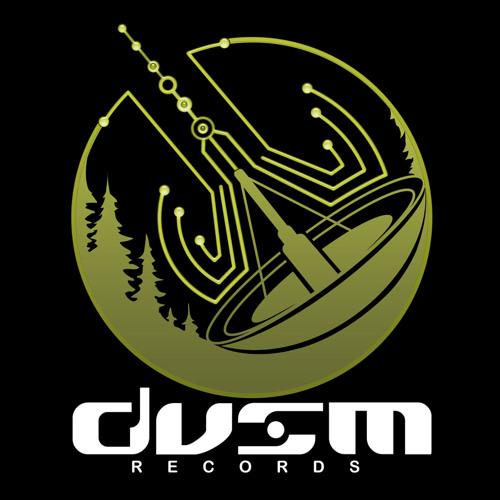 DVSM Records's avatar