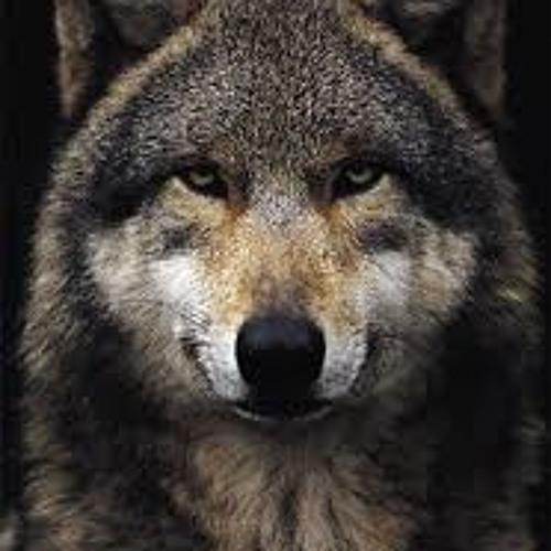 †imbahWOLF's avatar