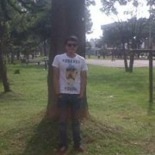 Daniel Andres Casallas's avatar