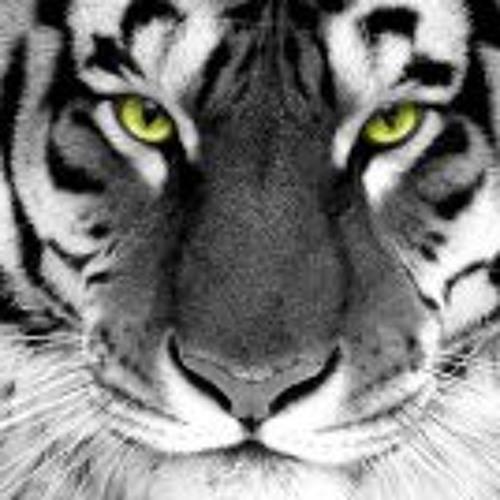 Yahya Jaffer's avatar