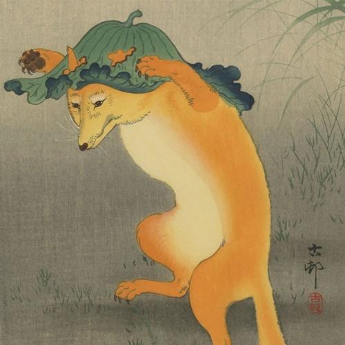 Foxowl's avatar