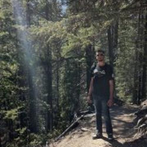 Brent Eric Scholl's avatar