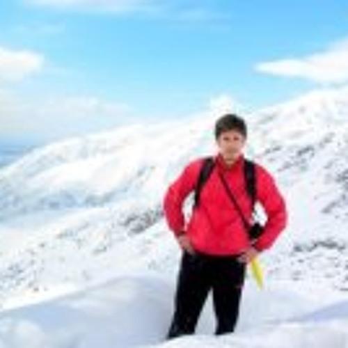 Amin Babaee's avatar