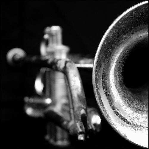 Grissino&Koma Meets Jazz's avatar