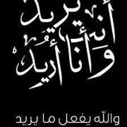 Mahmoud Abd Elkader 1's avatar