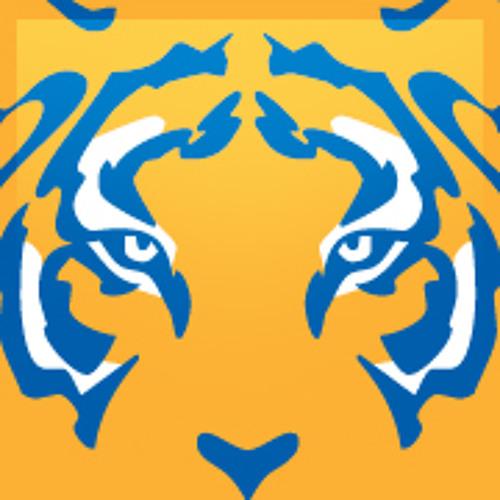 TigresOficial's avatar
