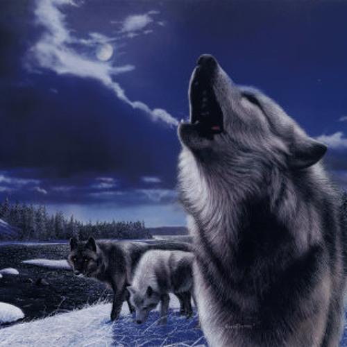 Wolf-Pack's avatar