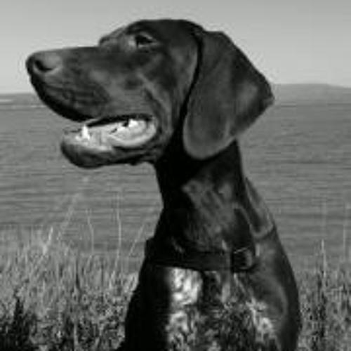 Georgi Georgiev 47's avatar