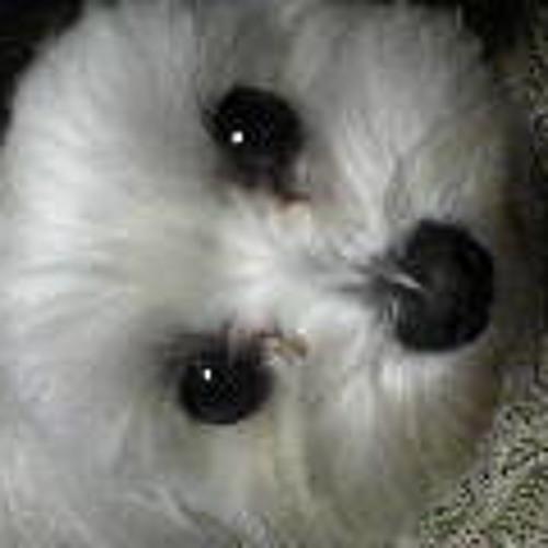 silvaflava's avatar