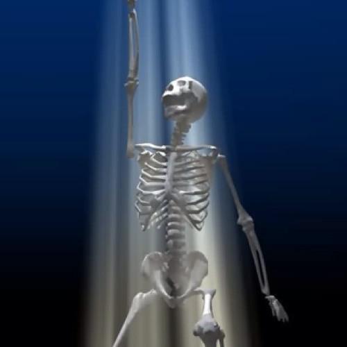 OliPosi's avatar