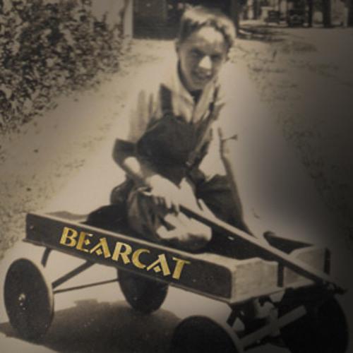 Bearcat (Renee Yohe)'s avatar