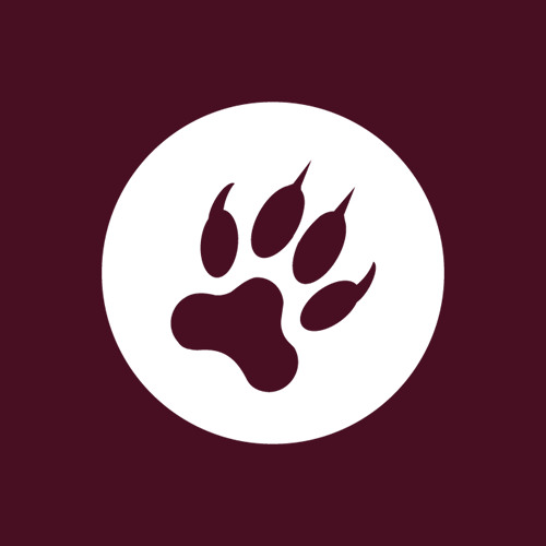 Brotha Wolf's avatar