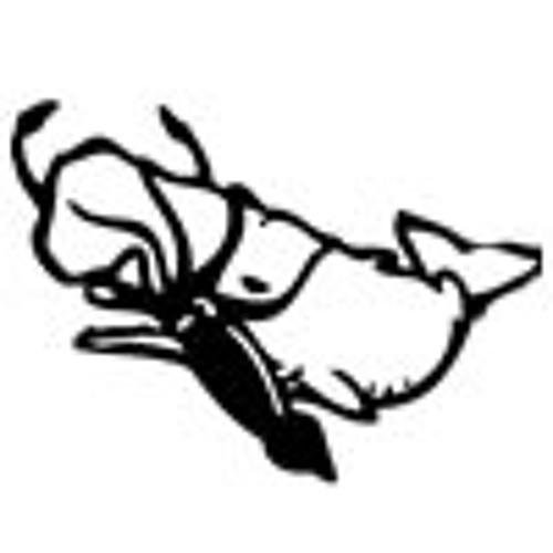 squidvswhale's avatar