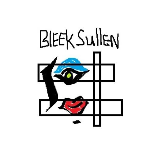 Bleek Sullen's avatar