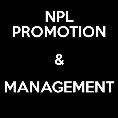 NPL Promotion's avatar
