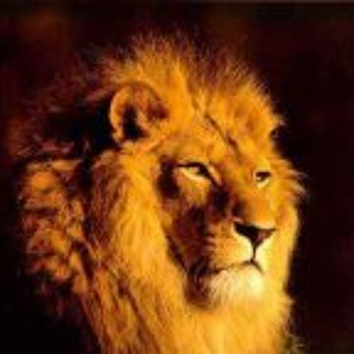 Emmanuel Manu's avatar
