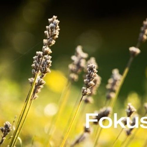 Fokus!'s avatar