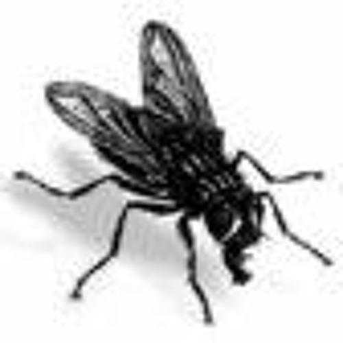 Osborn Fildegar's avatar