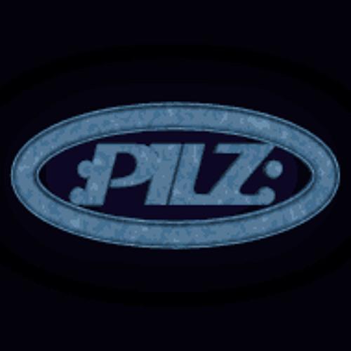 pilz971's avatar