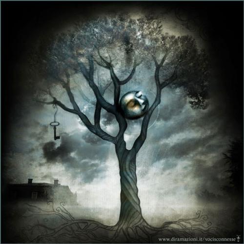 Lunar Bounce's avatar