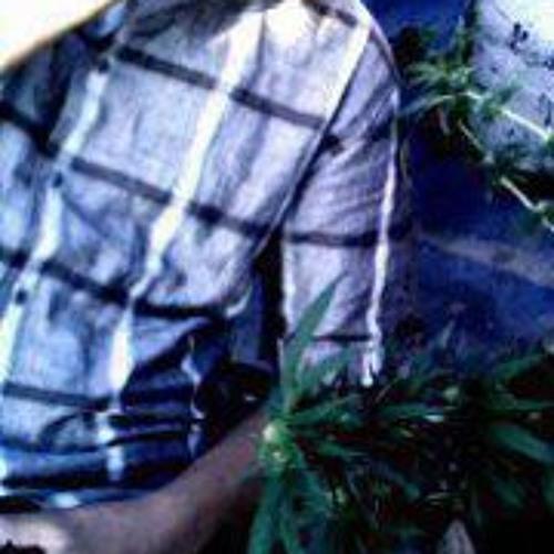 EL Pinchie Navs's avatar