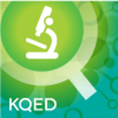 KQEDScience's avatar