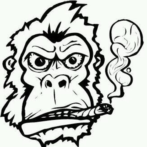 Stoned Apes's avatar