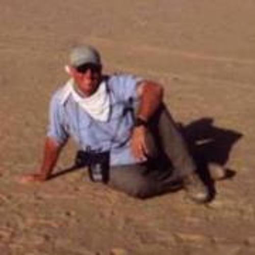 Dave Banks 2's avatar