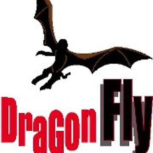 Parapente Dragon Fly's avatar