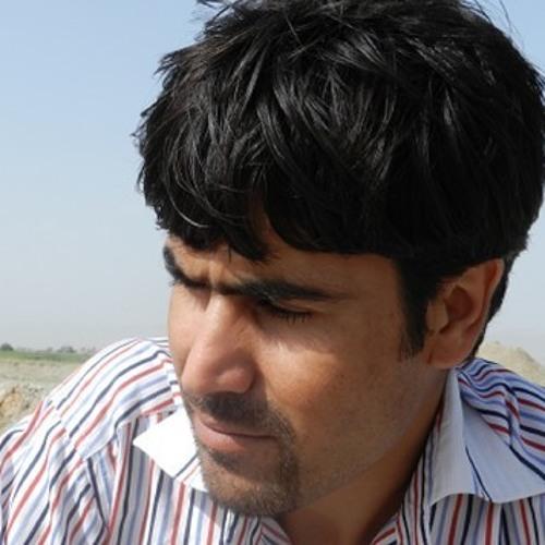 Shaswar- Qaradaghee's avatar