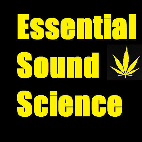 EssentialSoundScience's avatar