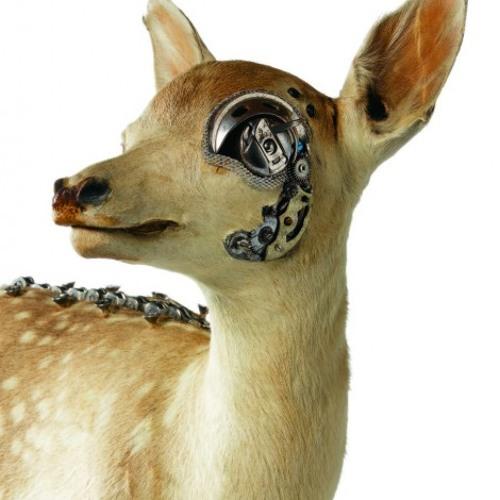 GBurnout's avatar