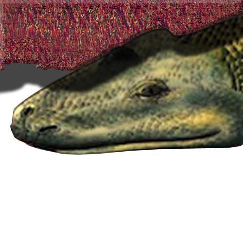 recsund's avatar