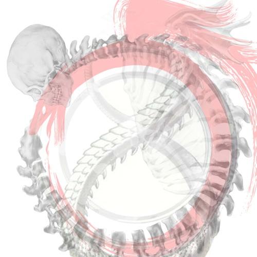 leebear1234's avatar