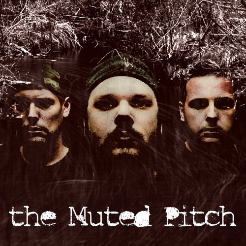 the Muted Pitch's avatar