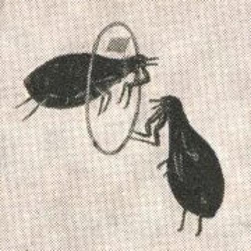 Aki Andra's avatar