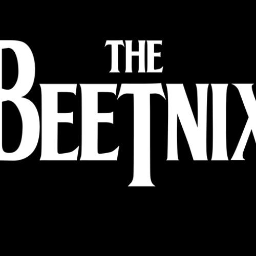 Beetnix's avatar