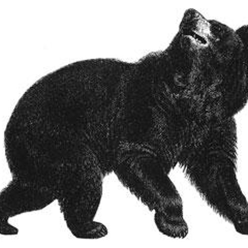 Bearfunk's avatar