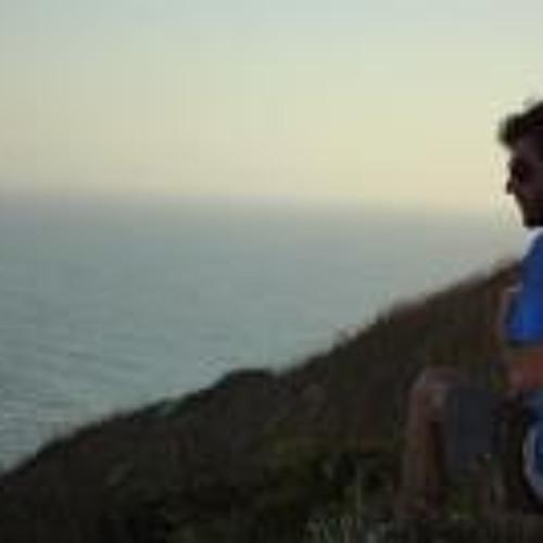 Pedro Krieger Vieira's avatar