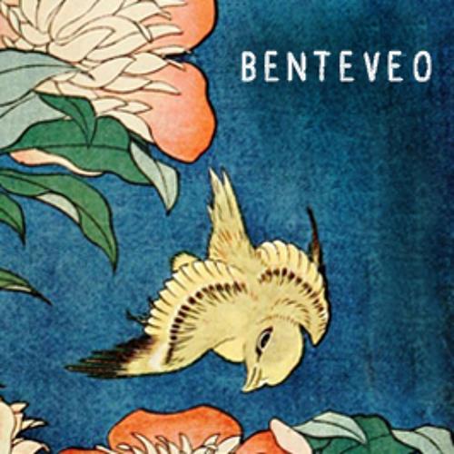 Benteveo's avatar