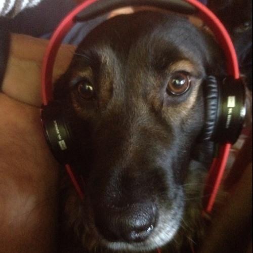 DJMATT's avatar