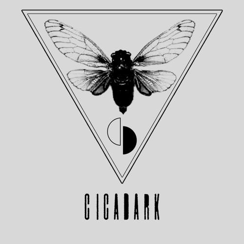 DJ Cicadark's avatar